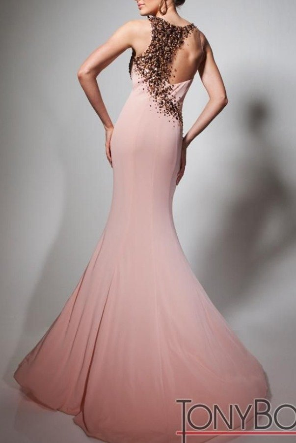 Tony Bowls Sweet Fit and Flare Blush Sheer Evening Dress TBE21377