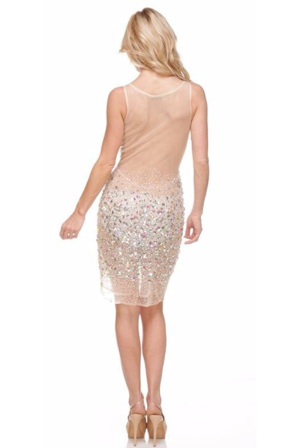 Terani Couture Fully Encrusted Crystal Silver Nude Mini Dress
