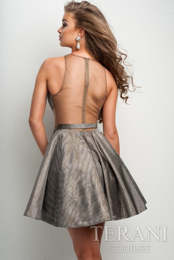 Terani Couture Sheer Silver Elegant Plunging Dress H3623