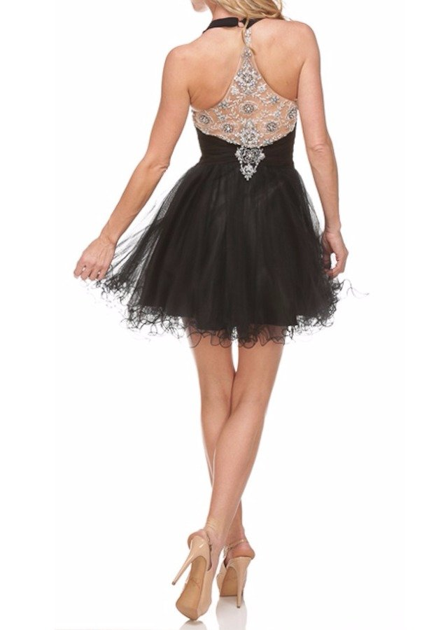 Terani Couture Beautiful Embellished Back Short Dress