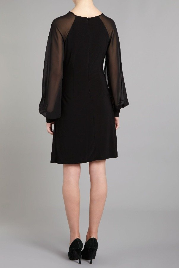 Eliza J Black Sheer Long Sleeve Dress