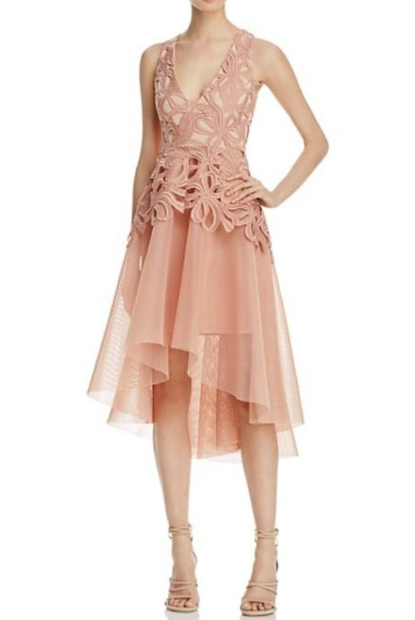 Elliatt Muse Lace and Mesh Fit and Flare Blush Dress