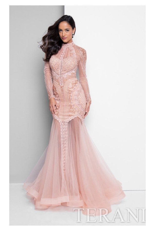 Terani Couture 1712GL3579 Blush Beaded Lace Long Sleeve Gown
