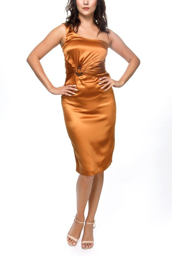 Roberto Cavalli Rust One Shoulder Silk Dress