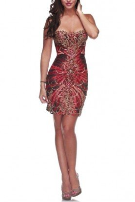 Navee Sheer Corset Swarovski Crystals Dress