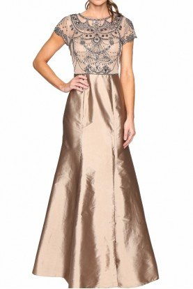 Adrianna Papell Cap Sleeve Necklace Beaded Gown