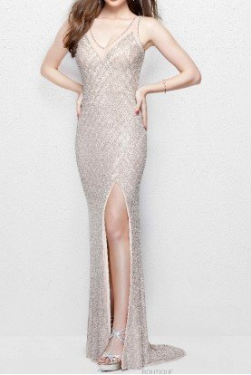3017 Embroidered Blush Sequin Gown Dress