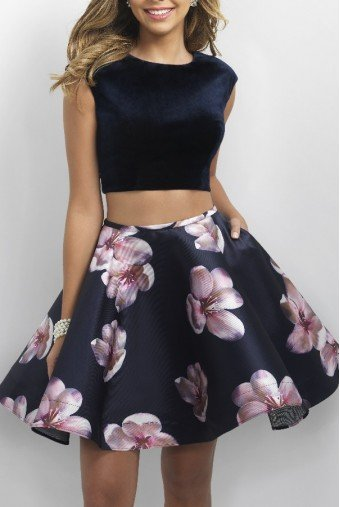 Blush Prom Crop Top Floral Velvet Two Piece Homecoming Dress