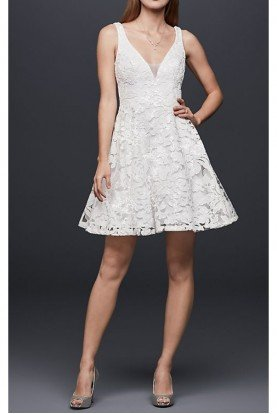 David's Bridal Lace Embroidered Mesh Mini fit and Flare Dress