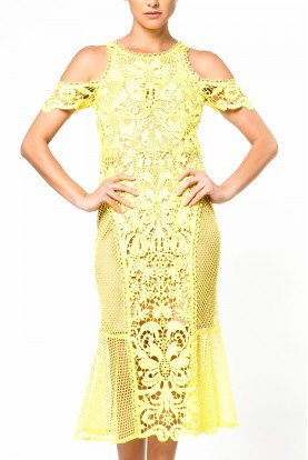 Thurley Yellow Garden Floral Embroidered See Through Dress