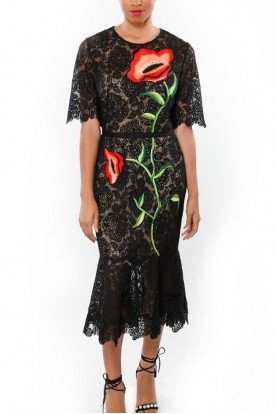 Black Rose Embroidered Fit Flare Lace Dress