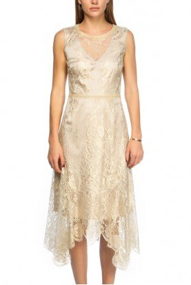 Gold Illusion Floral Embroidered Organza Dress
