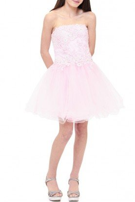 Pink Tulle Detailed Party Dress TW11511-P