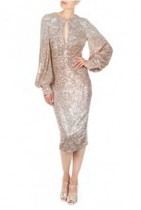 Champagne Ombre Sequin Sheath Dress SC2448