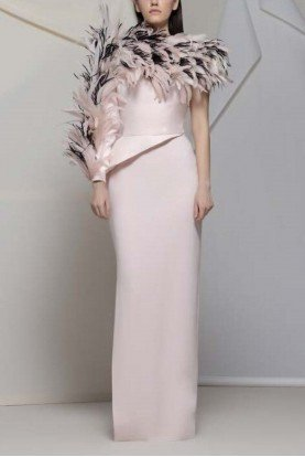 Copy of Anagni Feathered Neck Pink Gown
