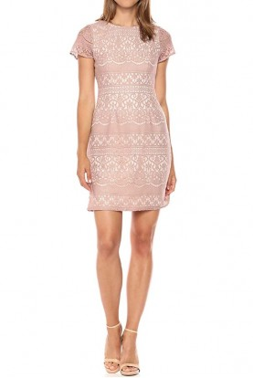 Adrianna Papell Cap Sleeve Lace Cocktail Dress Pink Nude